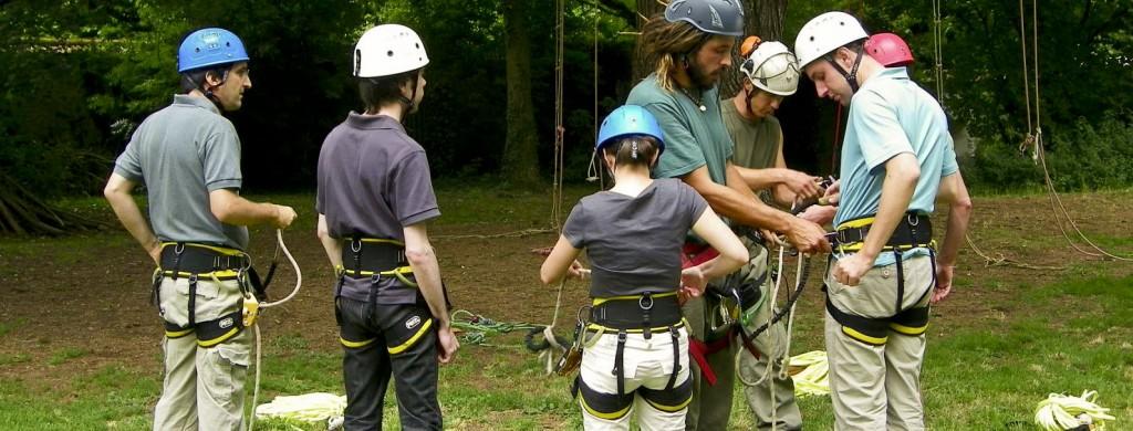La pratique de la grimpe d'arbres pour les groupes d'adultes