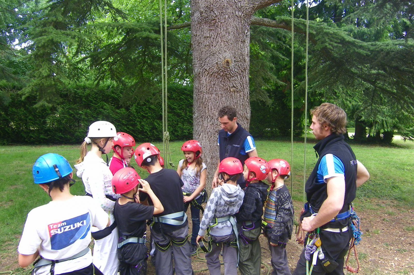 Mini-séjour : grimpe d'arbres