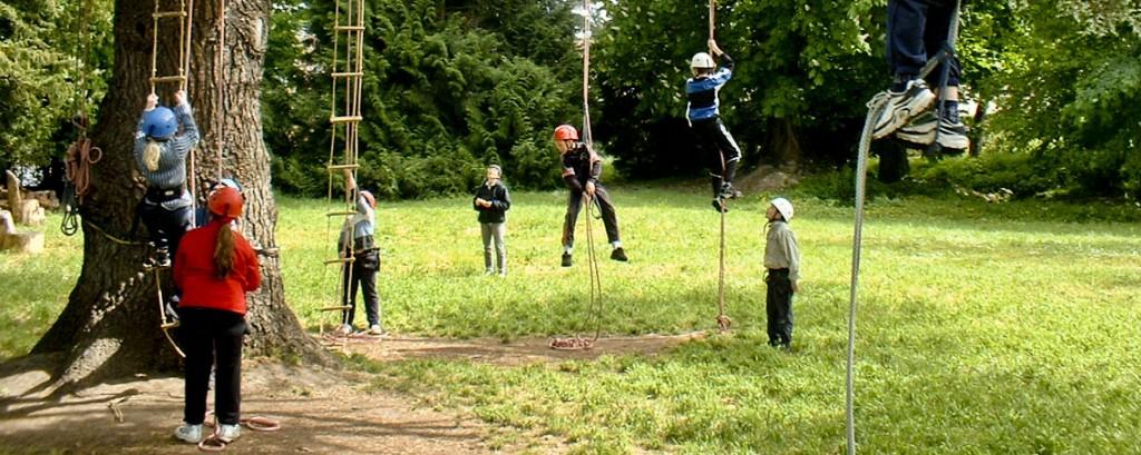 Classe découverte : la grimpe d'arbre